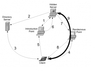 کلیات اتصال کاربر به سرویس مخفی در شبکه گمنام سازی TOR