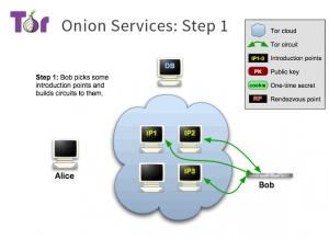 برقراری اتصال سرور با شبکه TOR