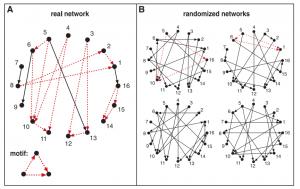 نمونهای از خروجی الگوریتم تشخیص زیرگراف پرتکرار