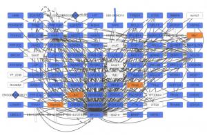 نمایش گراف بعد از استفاده از وب سرویس درcytoscape