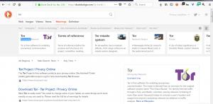 موتورهای جستجوی پیشرفته داک داک گو