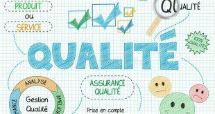 ارزیابی کیفیت نرم افزار
